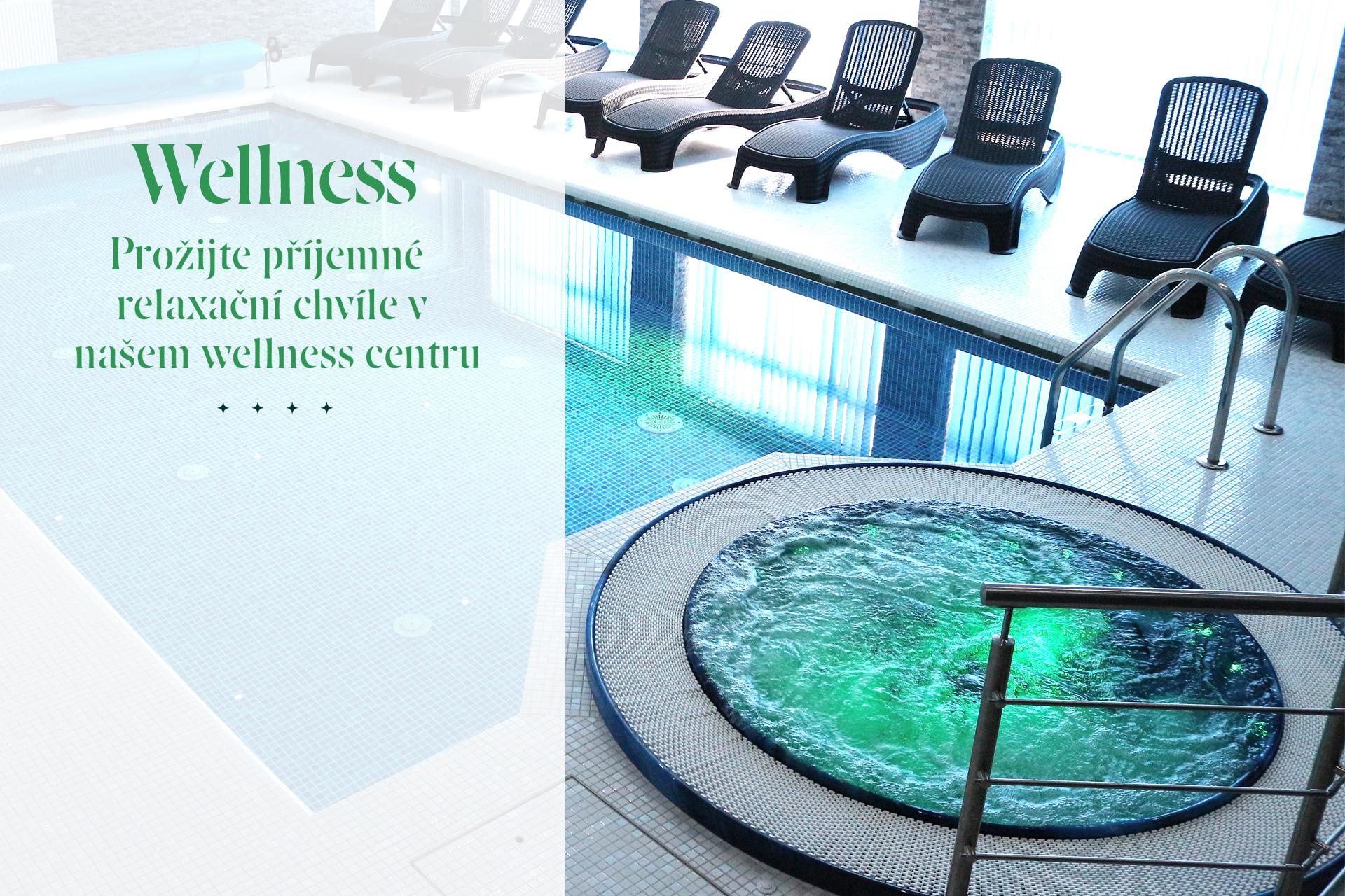 banner-wellness_v3